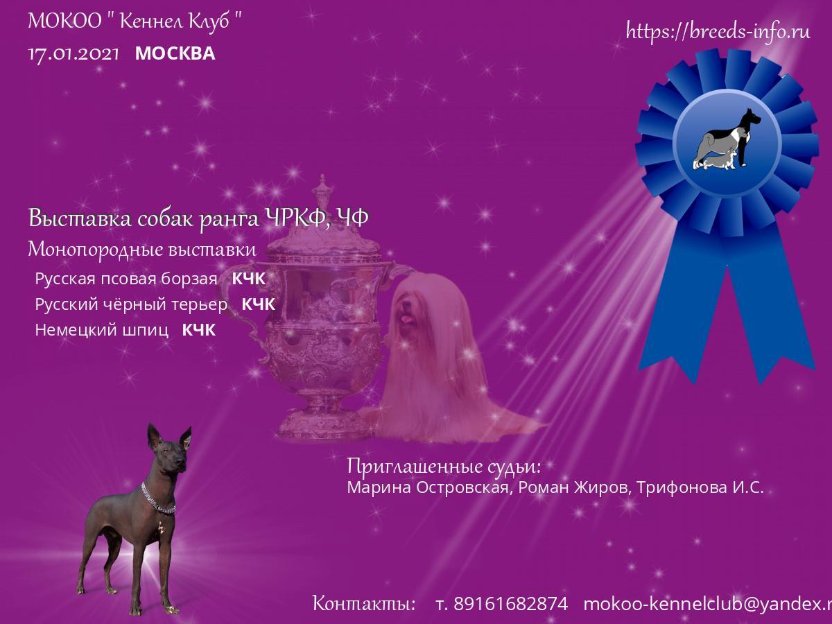 Москва кеннел клуб клуб dolls москва 1994