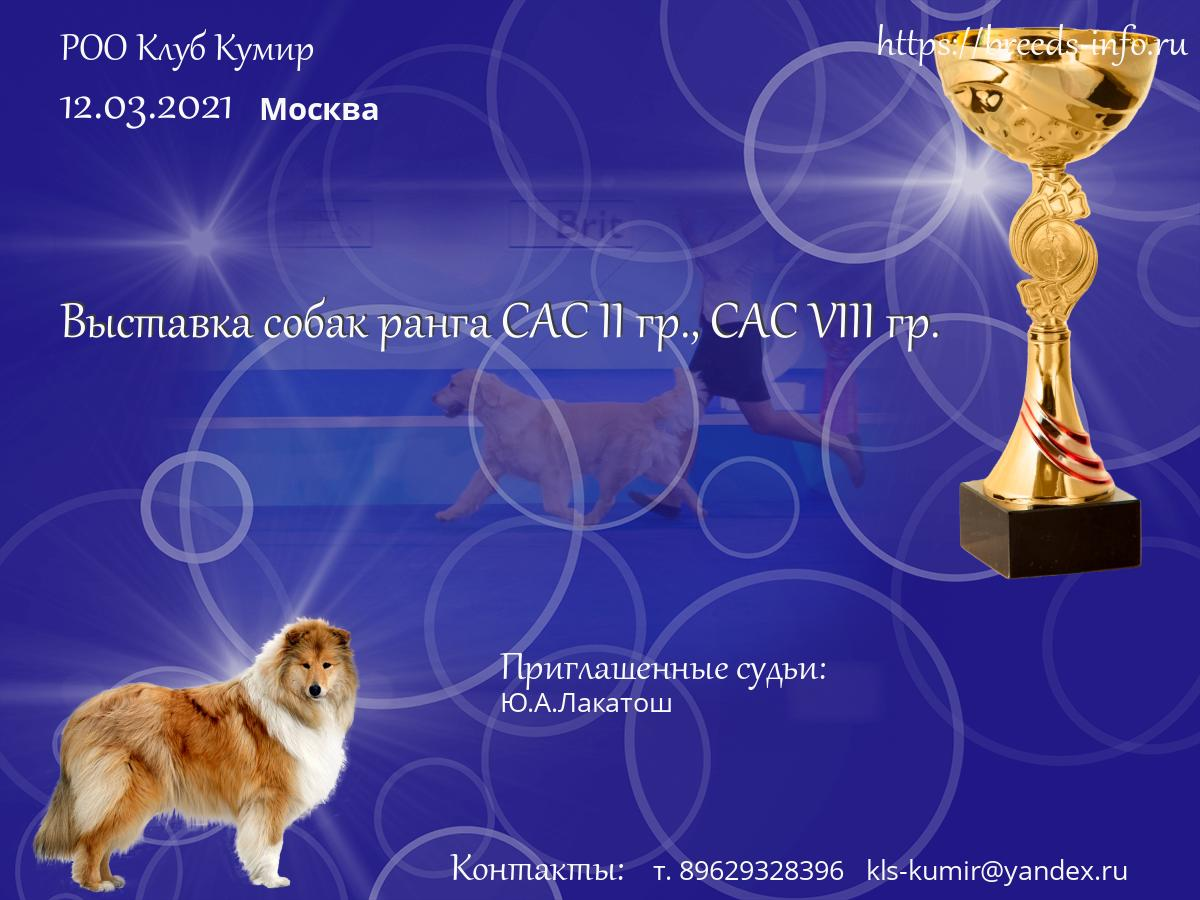 Сайты клубов собак москвы клуб в москве 2012