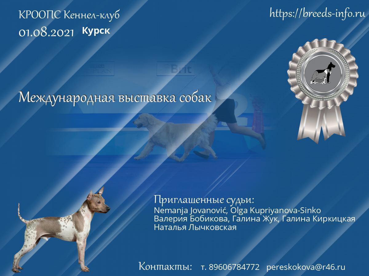 Москва кеннел клуб цска футбольный клуб москва таблица