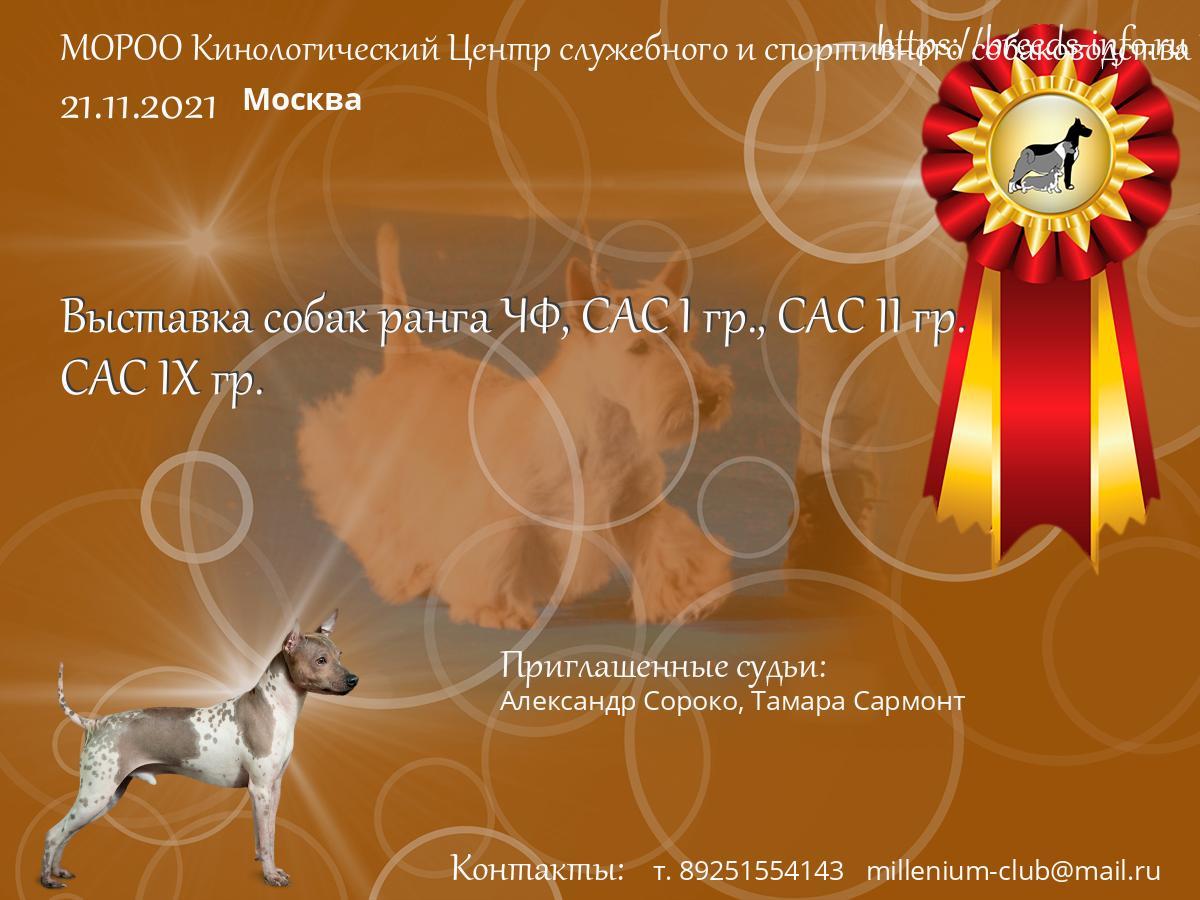 Москва клуб собаководов стрип клуб в екатеринбурге
